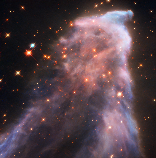 Il fantasma di Cassiopea (IC63): getti di energia creano veli di gas e polveri (fonte: NASA, ESA e STScI; Acknowledgment: H. Arab, Univ. of Strasbourg)